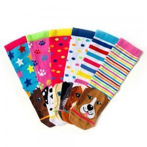 6lı geometrik köpek desenli çorap kutusu