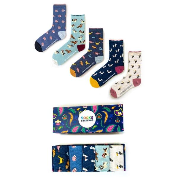 5'li Hayvanlar Alemi Çorap Kutusu