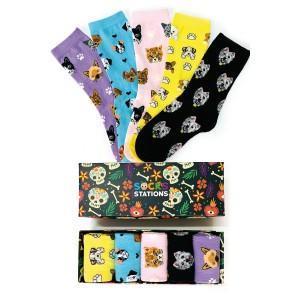 5'li Puppie Desenli Renkli Çorap Kutusu