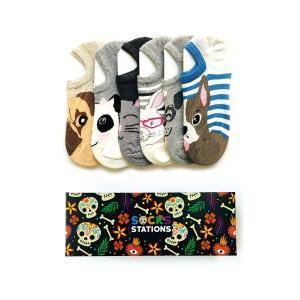 6'lı Hayvanlar Alemi Bilek Çorap Kutusu
