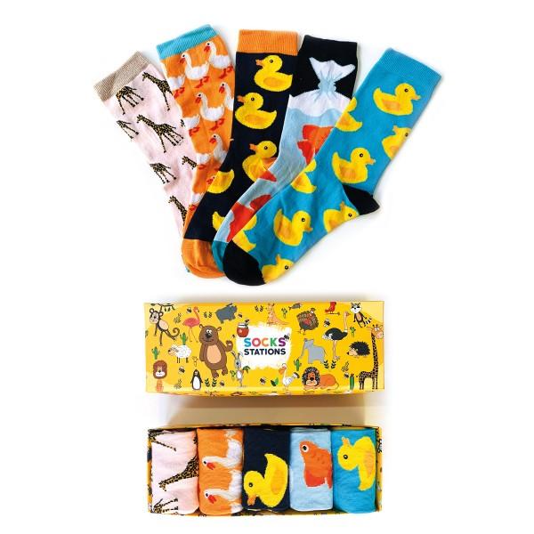5'li Ördek Çorap Kutusu