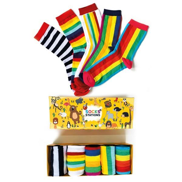 5'li Renkli Çizgi Desenli Çorap Kutusu