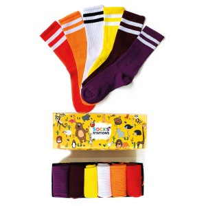 6'lı Çift Çizgi Renkli Çorap Kutusu 2