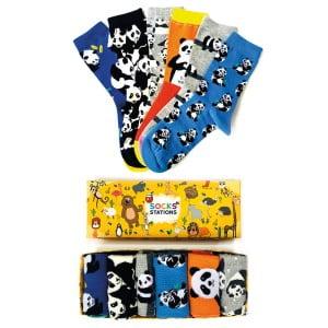 6'li Panda Desenli Çorap Kutusu