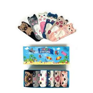 6'lı Kulaklı Köpekcik Bilek Çorap Kutusu