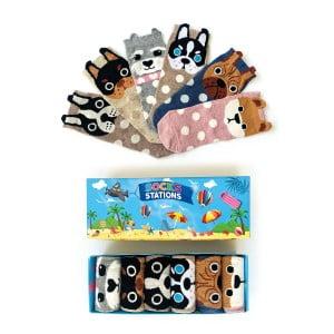6'lı Kulaklı Köpek Desenli Bilek Çorap Kutusu