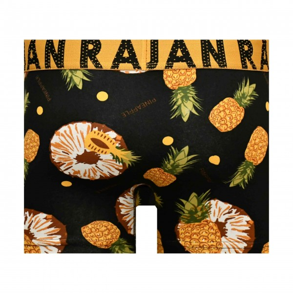 Ananas Desenli Boxer